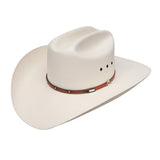 Stetson Harwood 10x Natural