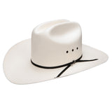 Stetson Rancher 10x Natural