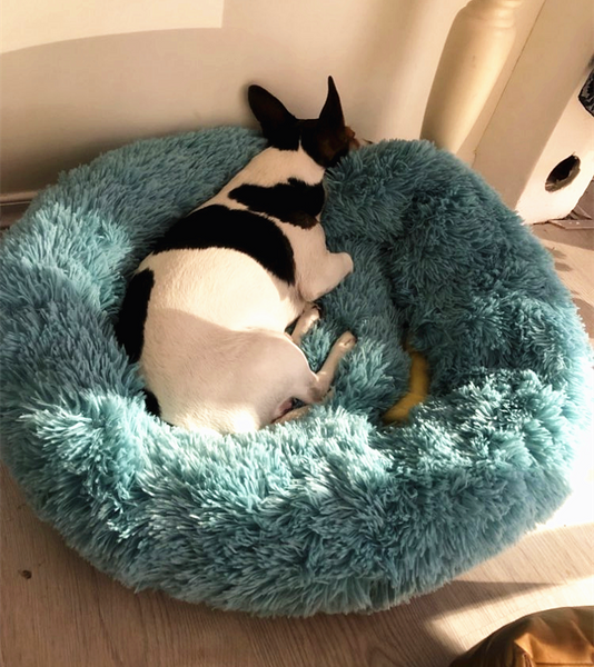 Plush Super Soft Round Dog Bed