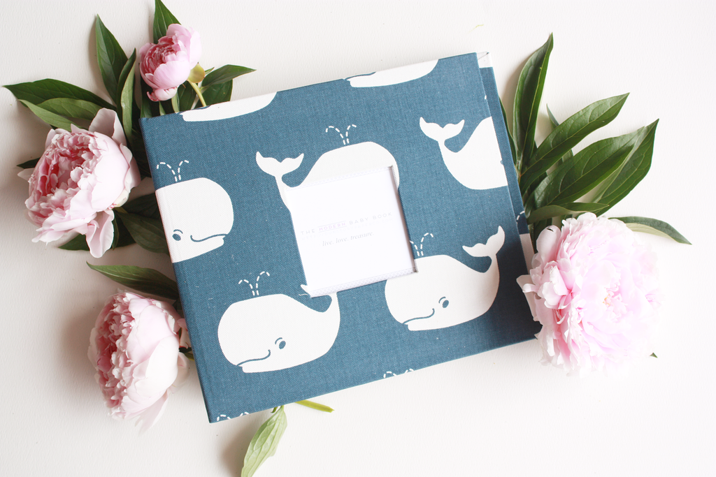 Navy Whale Keepsake Album by Our Story Paper Co.