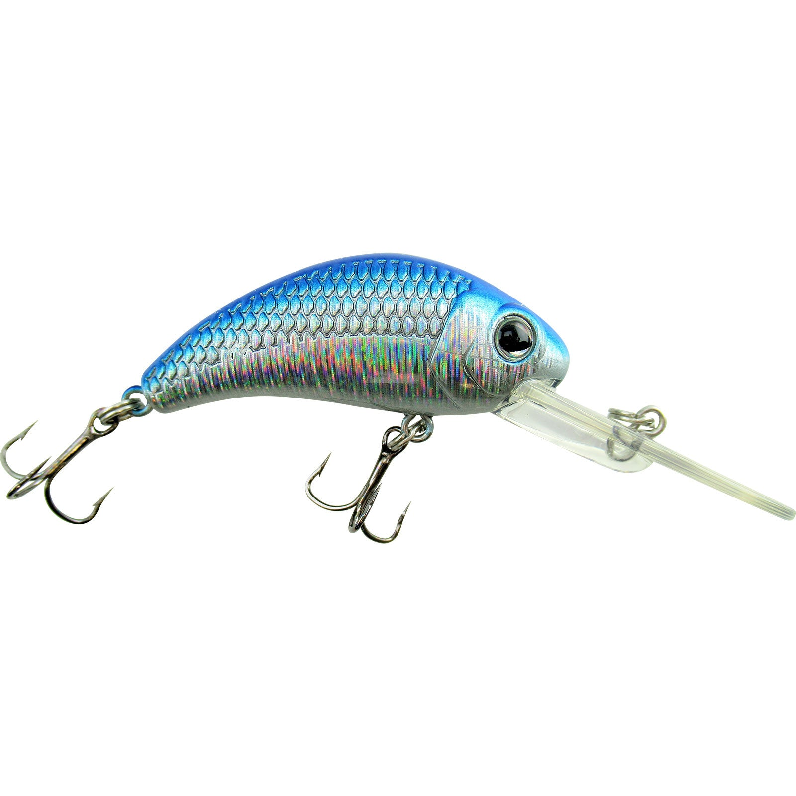 Blue Shiner Boogie Shad BS5 BS