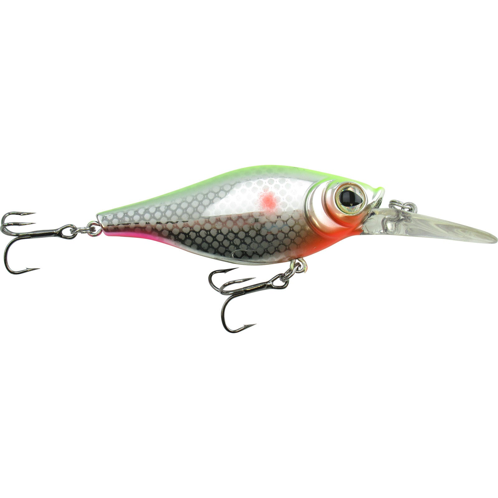 Jolly Rancher Shaky Shad -JR