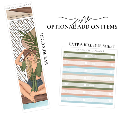 JUNE // ADD ON ITEMS // Vertical Monthly Planner Kit - Paper Chic Plans