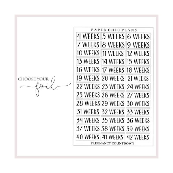 Pregnancy Countdown // Foiled - Paper Chic Plans