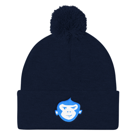 Navy + Aqua Blue & White Beanie