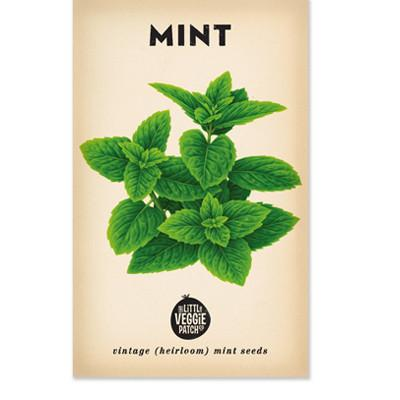 Mint Heirloom Seeds by The Little Veggie Patch Co.