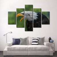 5 Piece Eagle Canvas Wall Art Image Picture Of Eagles Wallpaper Mural Decoration Design Artwork Poster Decor Print Gift Painting Photography