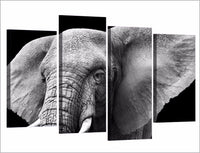 Elephant Ears & Tusks Framed 4 Piece Animal Canvas Wall Art Painting Wallpaper Decor Poster Picture Print