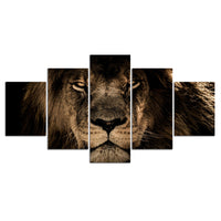 Lion Animal Nature Framed 5 Piece Canvas Wall Art Painting Wallpaper Decor Poster Picture Print