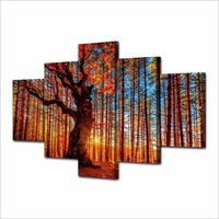 Tree In Sunrise Autumn Fall Forest Colors Sunset Framed 5 Piece Canvas Wall Art