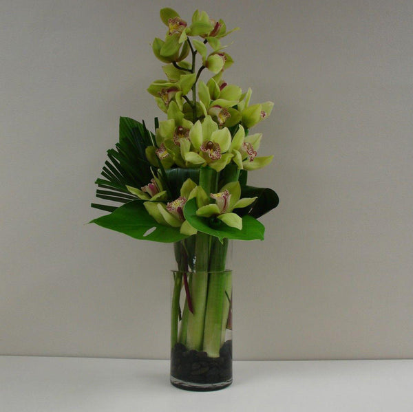 Cymbidium in a vase
