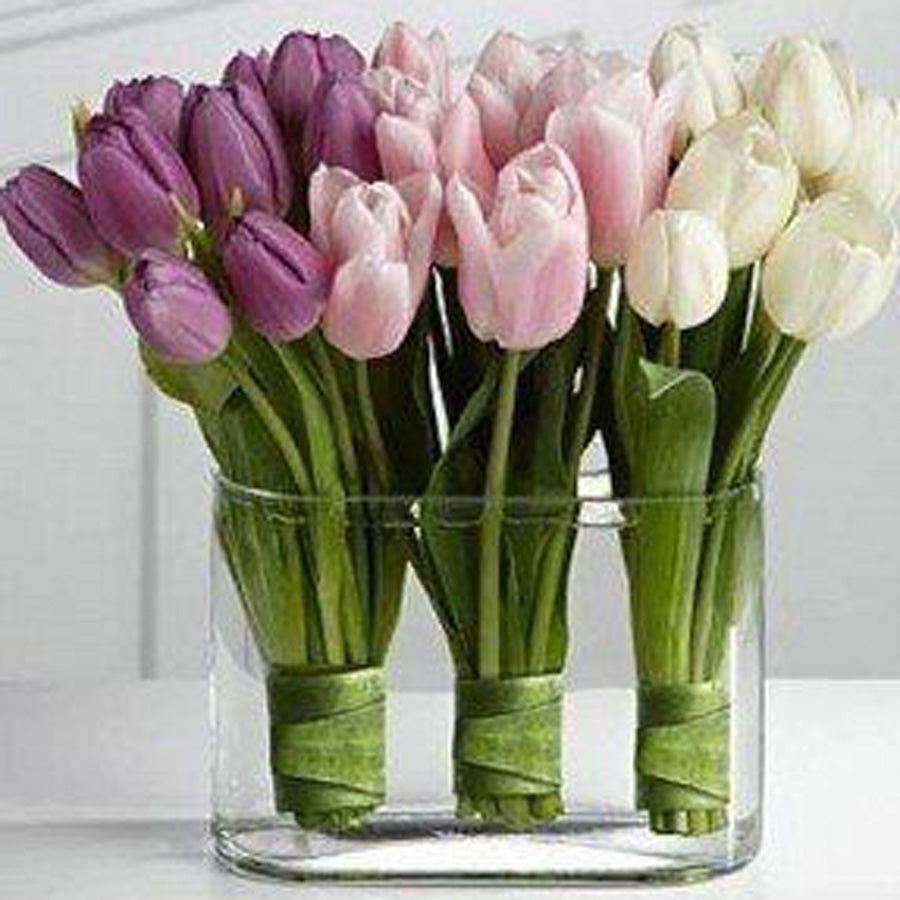 Mix Tulips in the vase