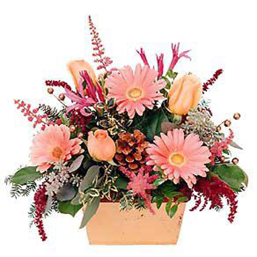 Gerbera & Tulips arrangement