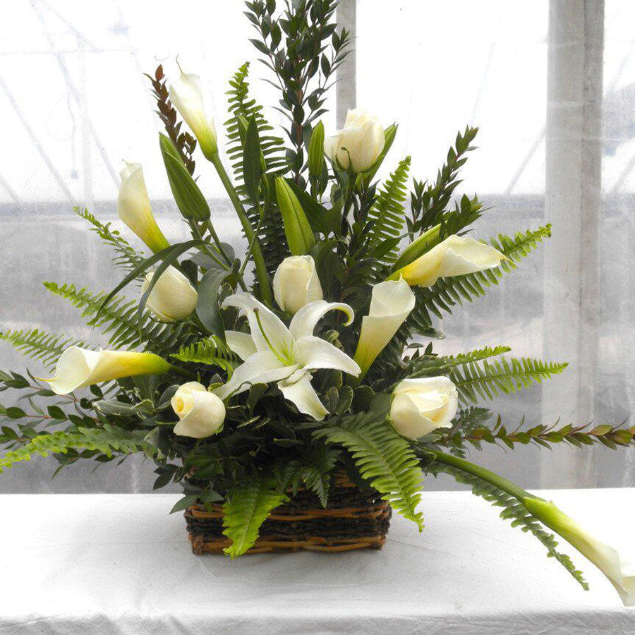 White Calla Arrangement