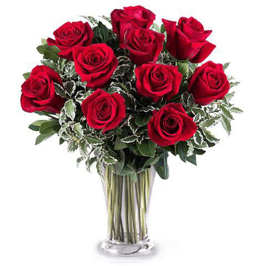 12 Red Roses in the vase