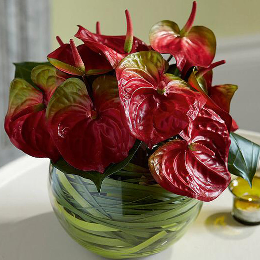 Anthurium in a fish ball vase