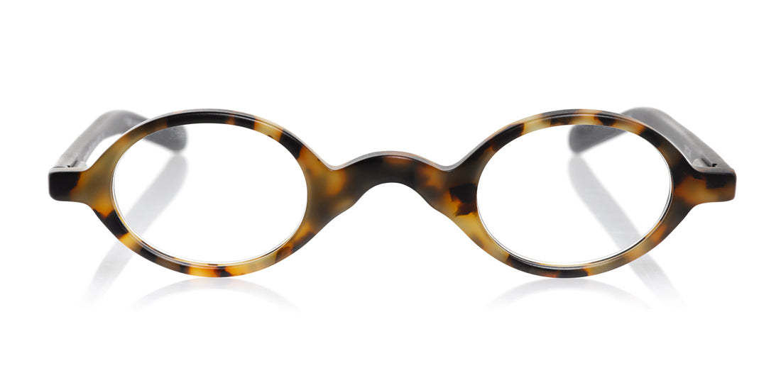 Old Money Color 19 -  Matte tortoise front with black temples
