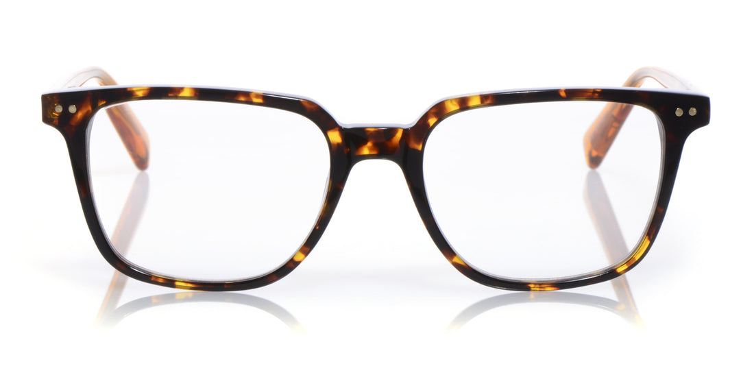 C Suite Color 10 - Tortoise front with orange temples