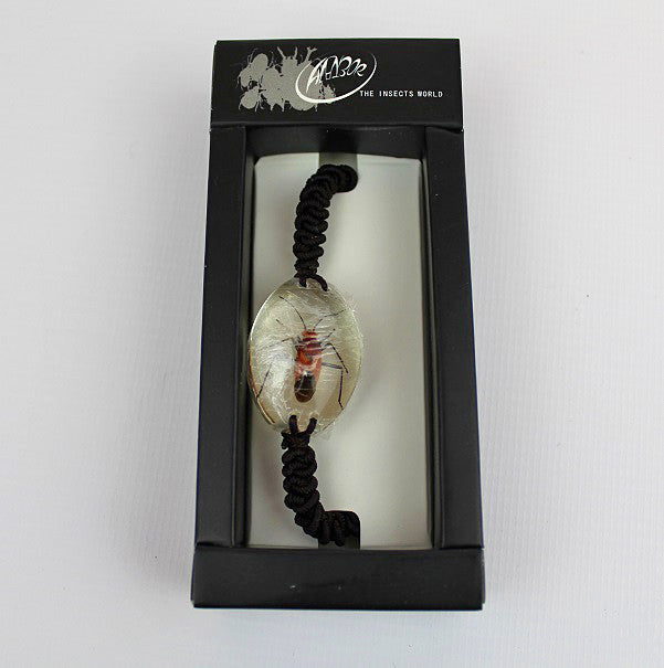 Real Insect 'Red Bug' Clear Bracelet
