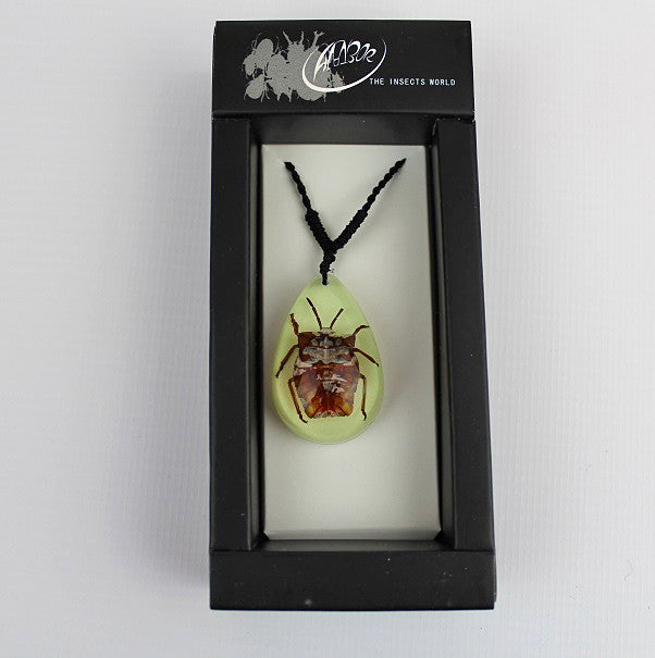 Real Insect 'Lychee Stink Beetle' Glow Necklace