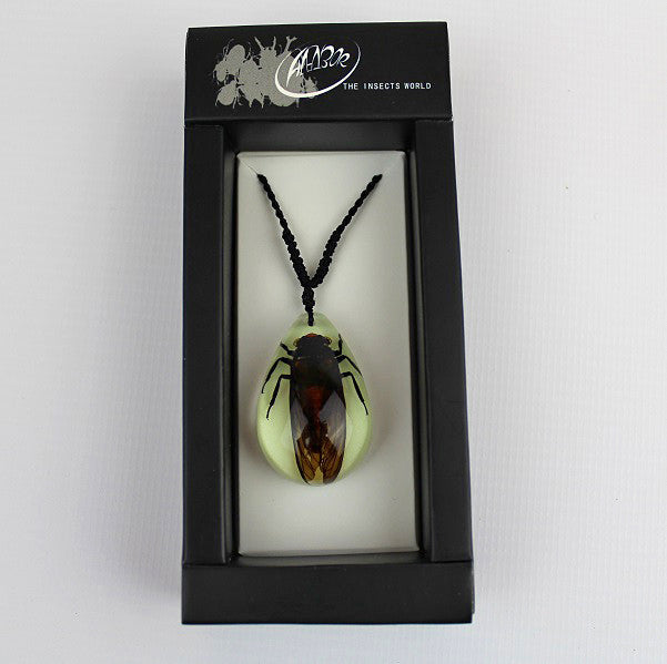 Real Insect 'Red Cicada' Glow Necklace