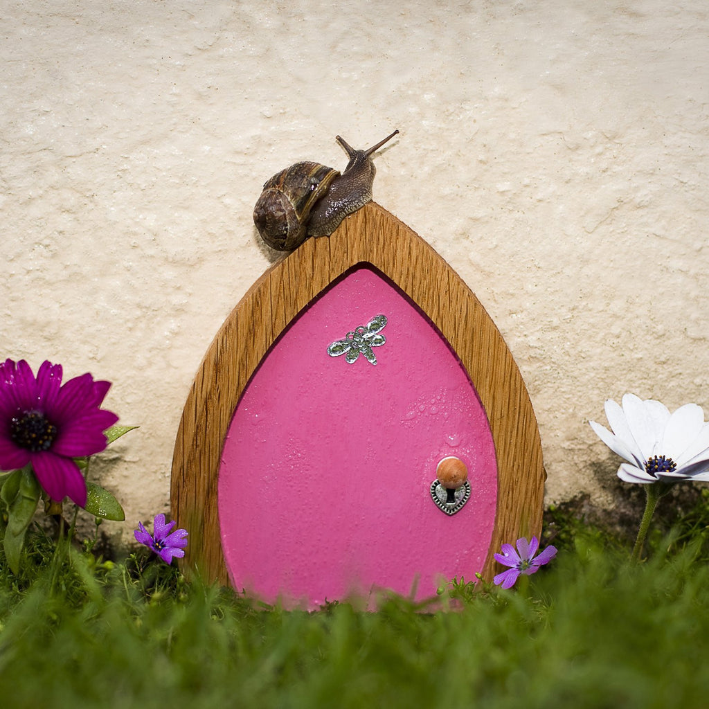 Pink Fairy Door with Dragonfly, Key and Magic Fairy Dust