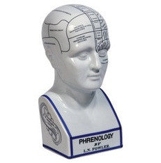 PHRENOLOGY HEAD FROM CENTURION