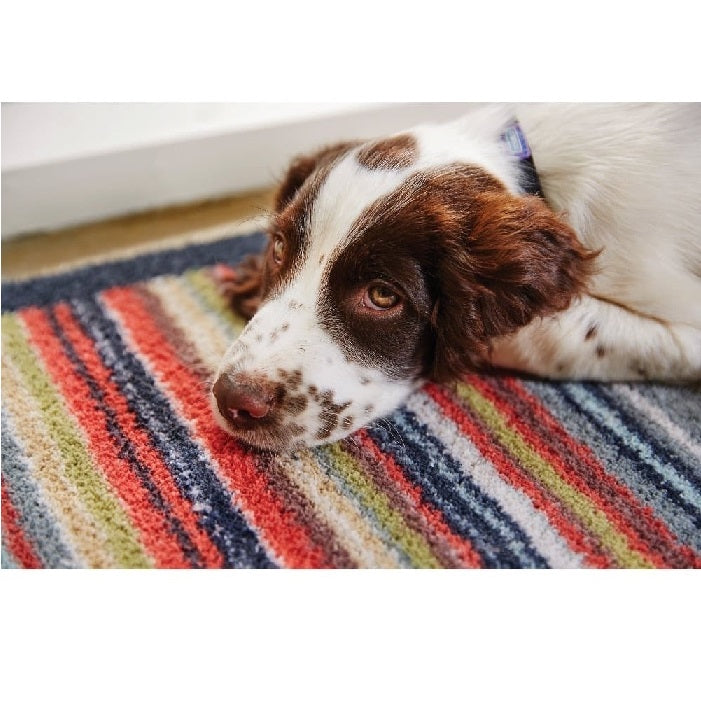 Hug Rug Indoor Barrier Doormat (65cm x 85cm) Stripe 32