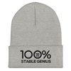 100% STABLE GENIUS Cuffed Beanie - 100 Percent Tee Company
