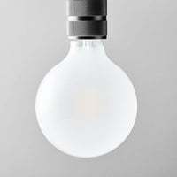 LED Light Bulb - Frosted Large Globe