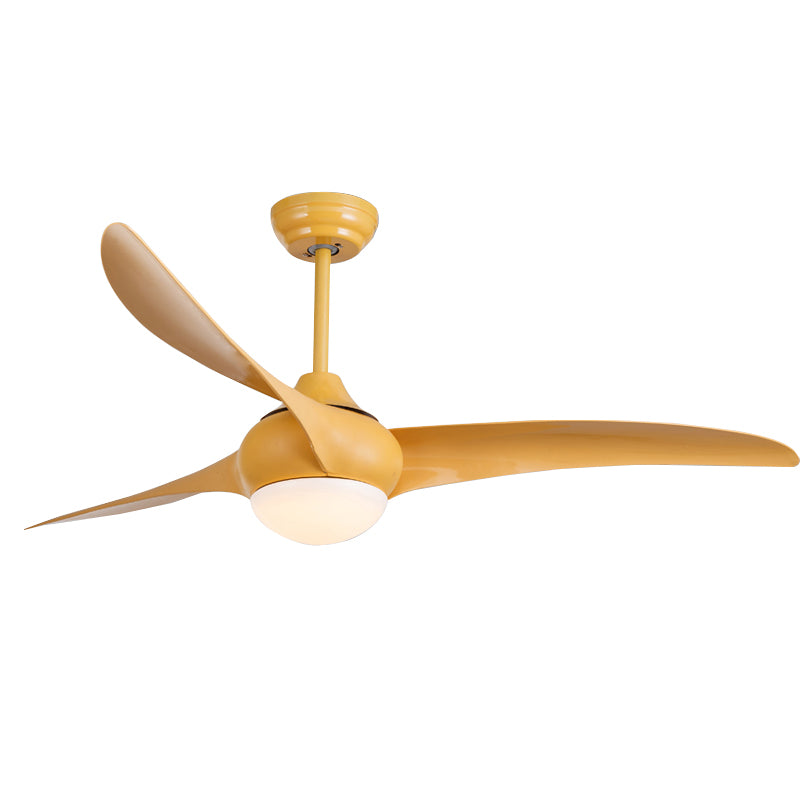 Indoor Ceiling fan light