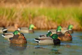 Avery/GHG Hot Buy ll Mallard Duck Decoys 2 Pack