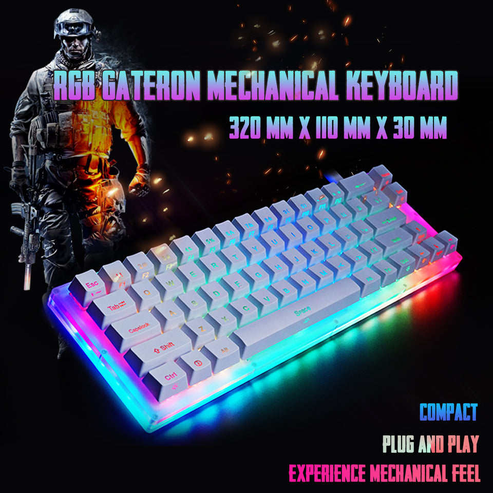 Womier K66 | Gateron Switch RGB | Mechanical Gaming Keyboard with Crystalline Base - Anne Pro 2