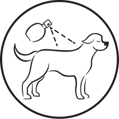 Mipuchi scent on dogs back
