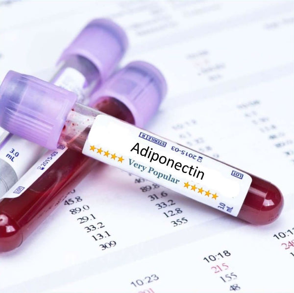 Adiponectin Blood Test