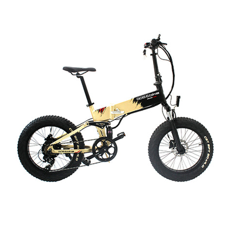 F019 20 Inches fat tyre Electric Bike