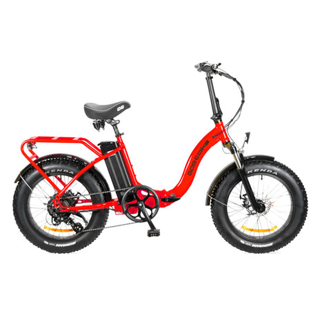 F024 FAT TYRE ELECTRIC BIKE
