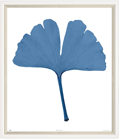 Trowbridge Gallery Gingko Leaf I