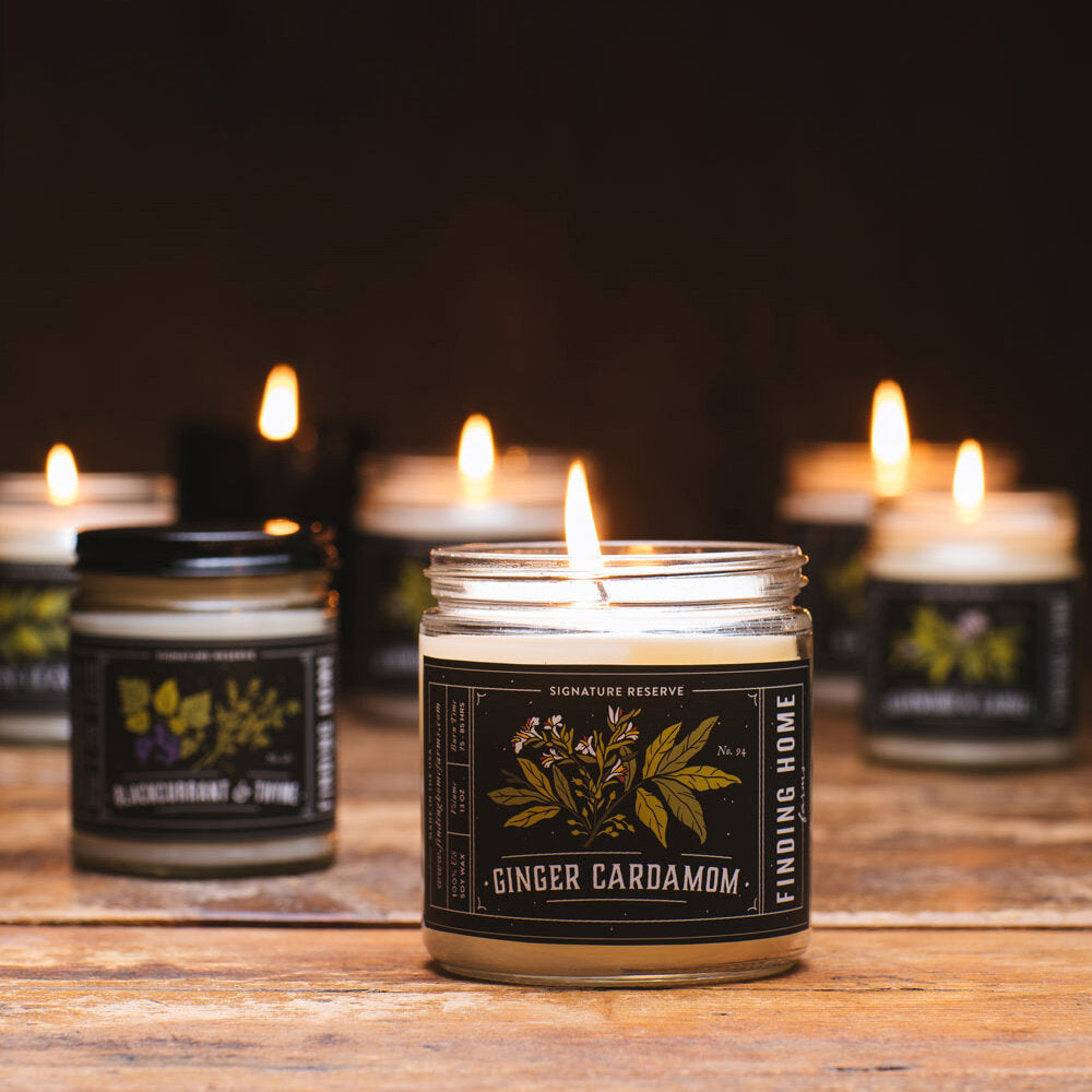 Ginger cardamom candle, 13oz