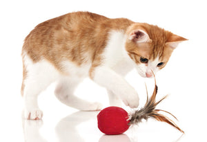 Cat Toy Smart Feather Ball