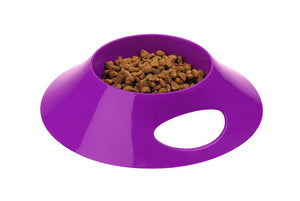 Cat Toy & Feeding Bowl