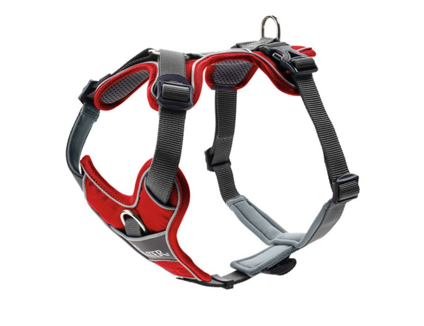 Harness DIVO (red)