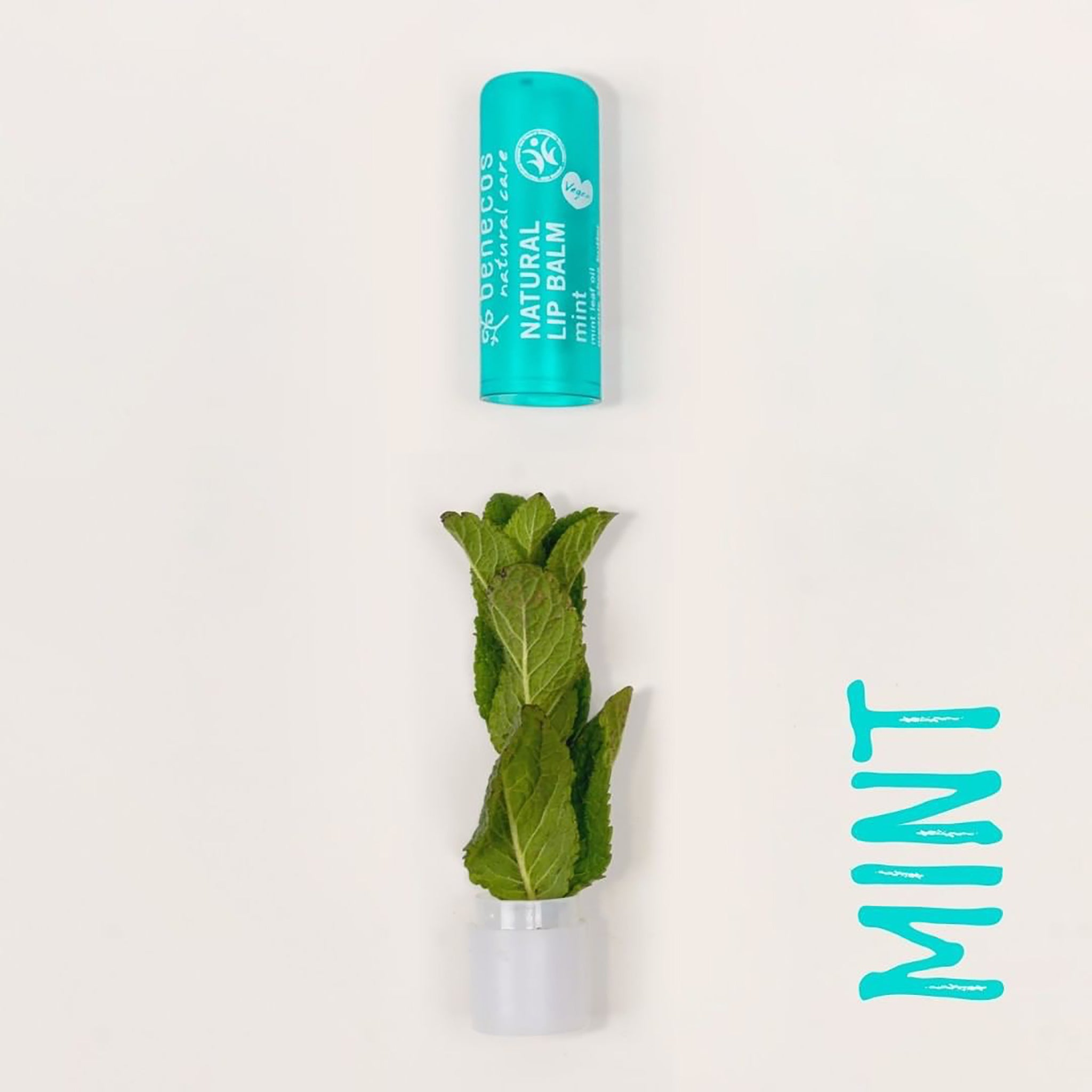 Natural Lip Balm - Mint (Product Expiry Jan 2021)