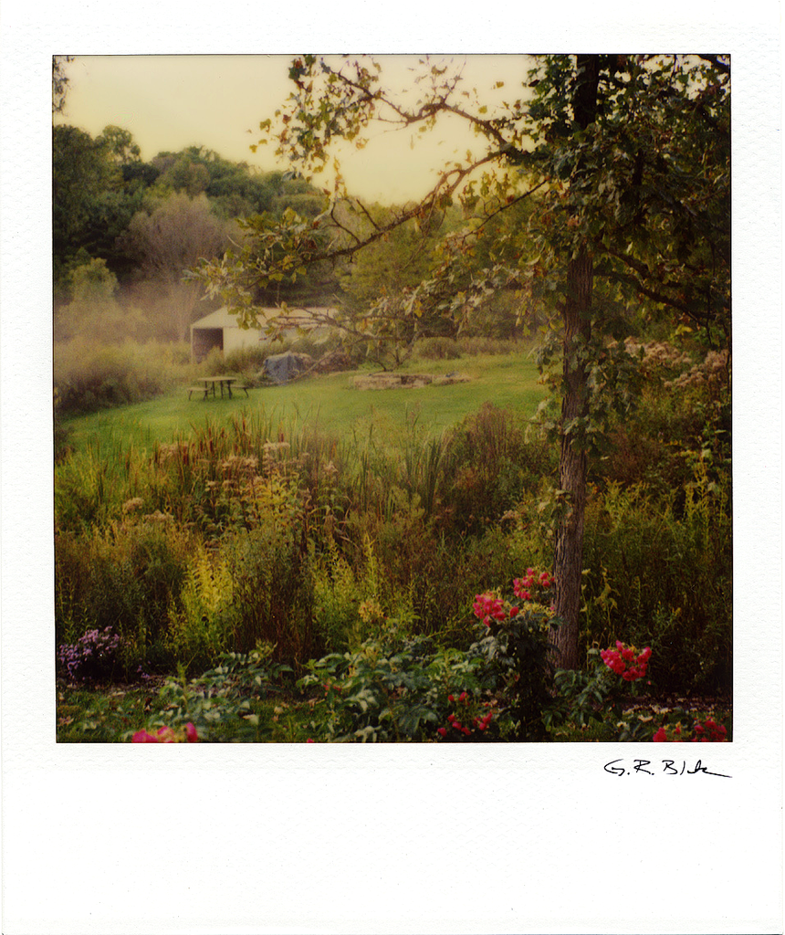 Back Yard  - Richland Center WI | Polaroid Reproduction