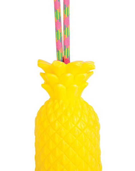 Pineapple Soap on a Rope