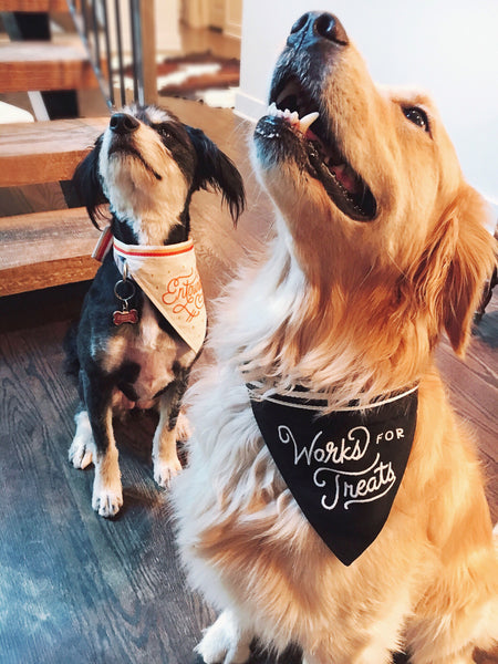 Works For Treats Dog Bandana