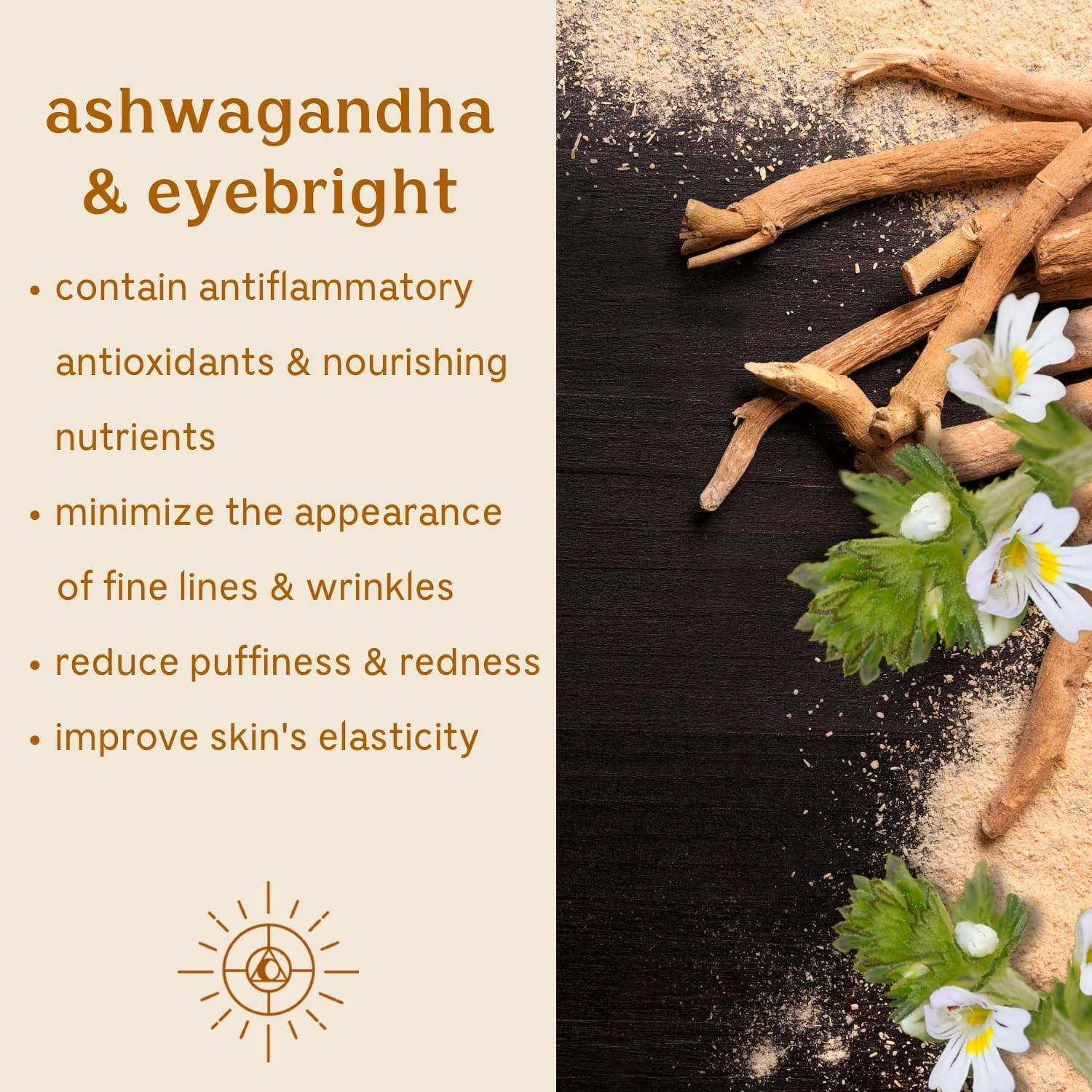 Solluna's Feel Good Eye Cream key ingredient benefit description. Ashwagandha & Eyebright: Contain antiflammatory antioxidants & nourishing nutrients, Minimize the appearance of fine lines & wrinkles, Reduce puffiness & redness, Improve skin's elasticity