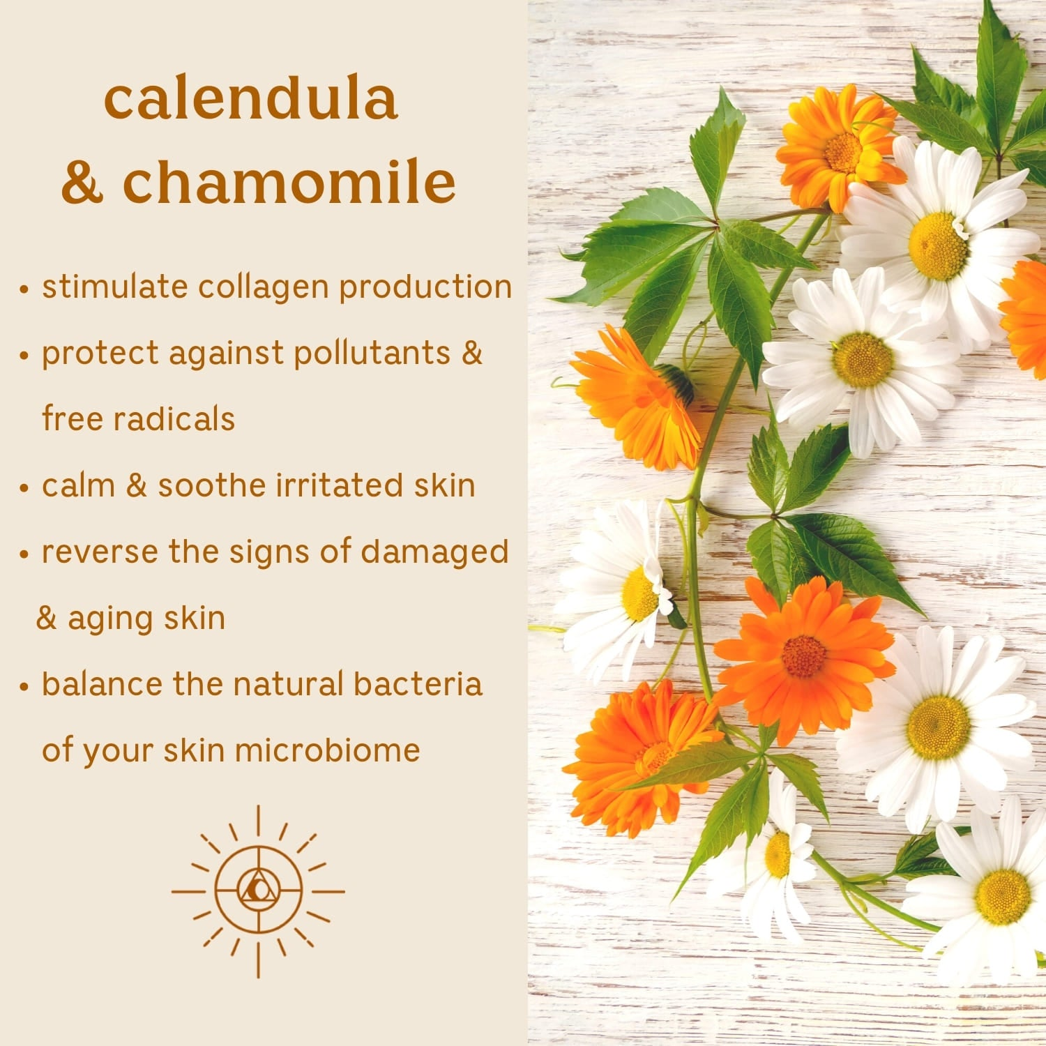 Solluna's Feel Good Eye Cream key ingredient benefit description. Calendula & Chamomile: Stimulate collagen production, Protect against pollutants & free radicals, Calm & soothe irritated skin, Reverse the signs of damaged & aging skin, Balance the natural bacteria of your skin microbiome