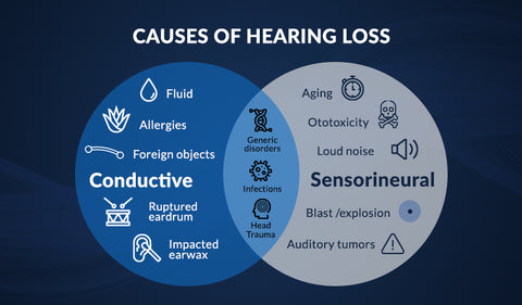 Infographic of the various causes of high frequency hearing loss