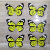 yellow butterfly patches for shoes decal